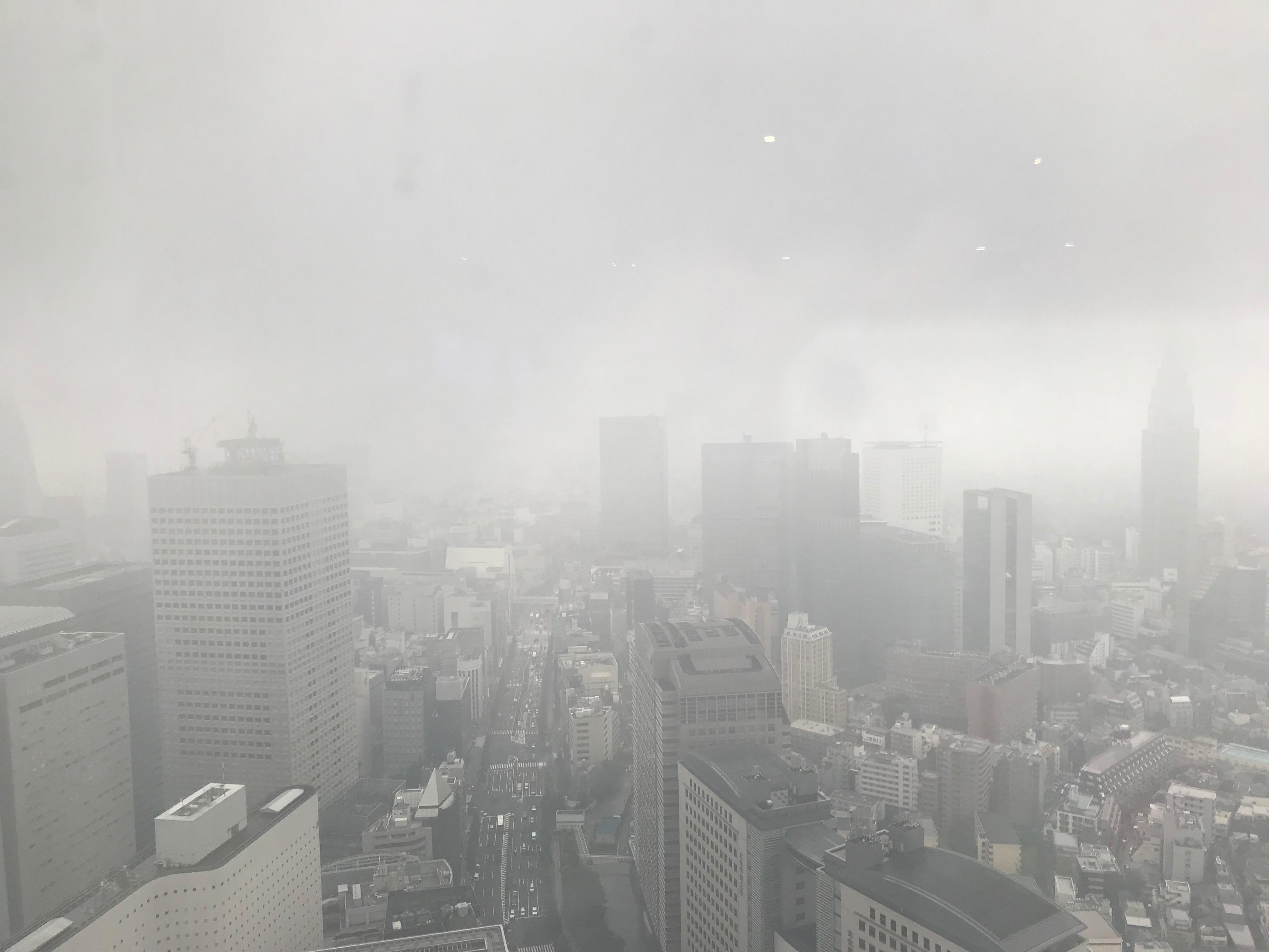 パークハイアット東京49階雨